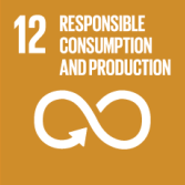 Ensure sustainable consumption and production patterns